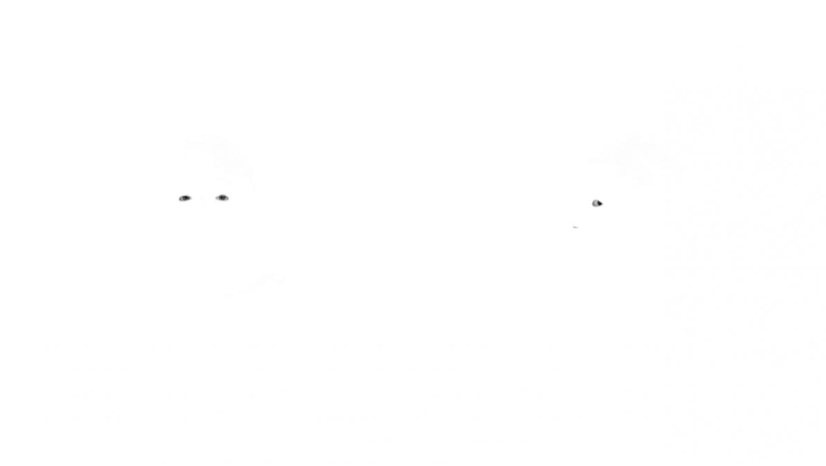 http://saskiabannasch.de/files/gimgs/th-15_Mehr-oder-weniger_2_7.jpg